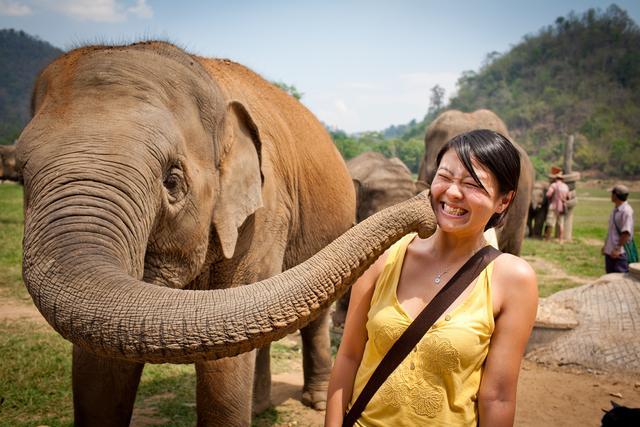发达的旅游业是泰国的支柱产业